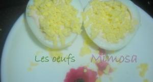 mimosa3