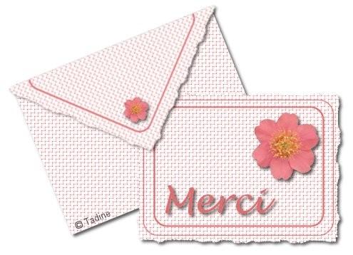 merci03.jpg