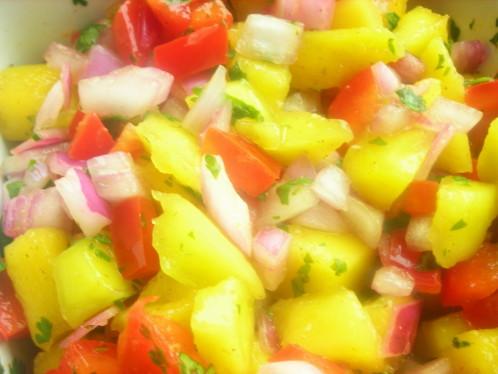 salsa_mangue2.jpg