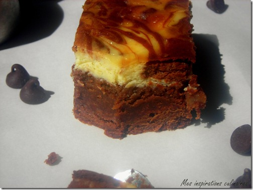 brownie_cheesecake_marbre3