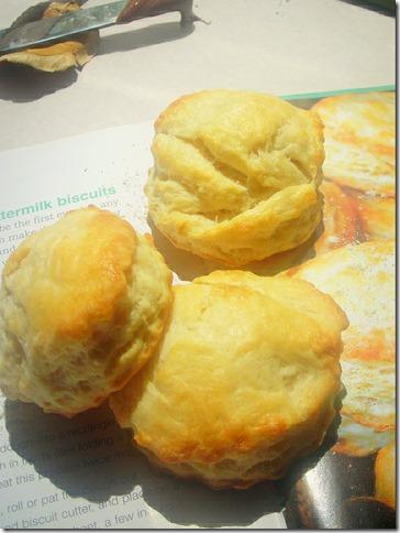 biscuits-au-lait-fermente2