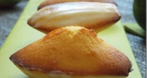madeleine-citron-vert-miel3_3