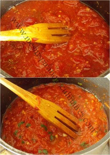 aubergines-a-la-parmigiana10