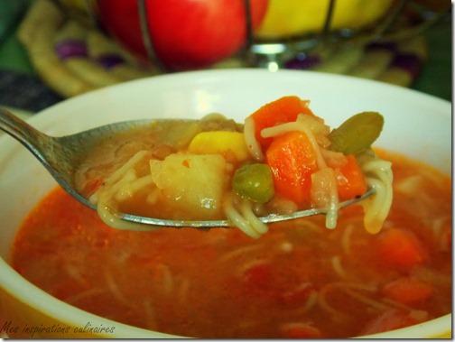 soupe_legumes_express5