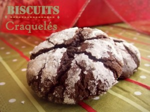 biscuits-craqueles-demartha-stewart90