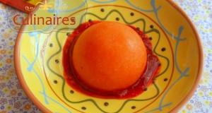 sorbet-mangue-1