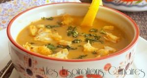 soupe-de-poisson-fenouil-1