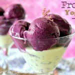 frozen yogurt blueberries 1