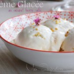 creme glacee aux 2 ingredients 1