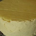 fine couche de creme au beurre