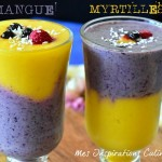 smoothie mangue myrtilles 1