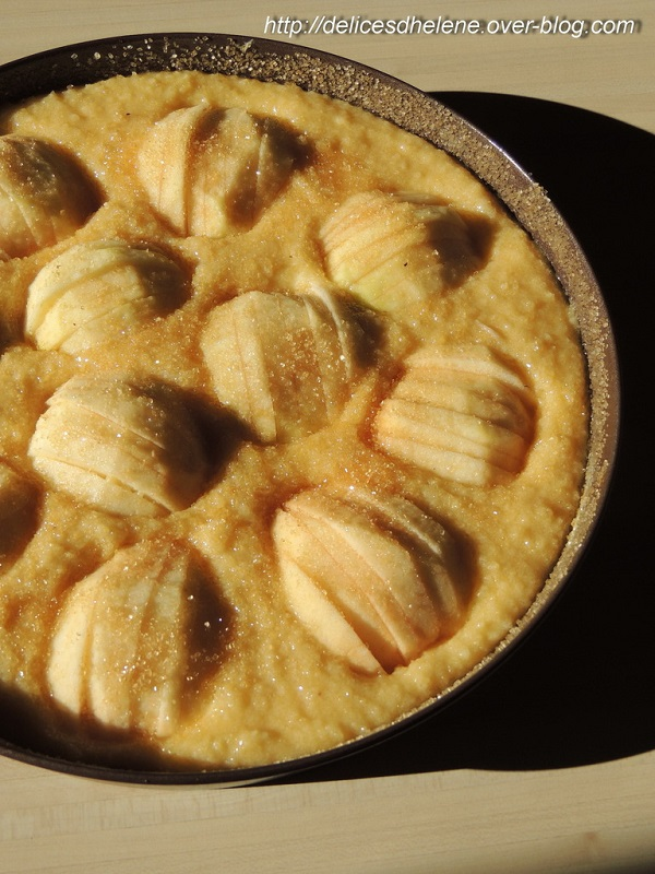 ob_02e49e_gateau-aux-pommes-creme-frangipane