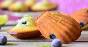 madeleines inratables myrtilles 1